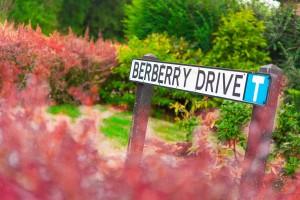 Maulden Vale Berberry Drive Development